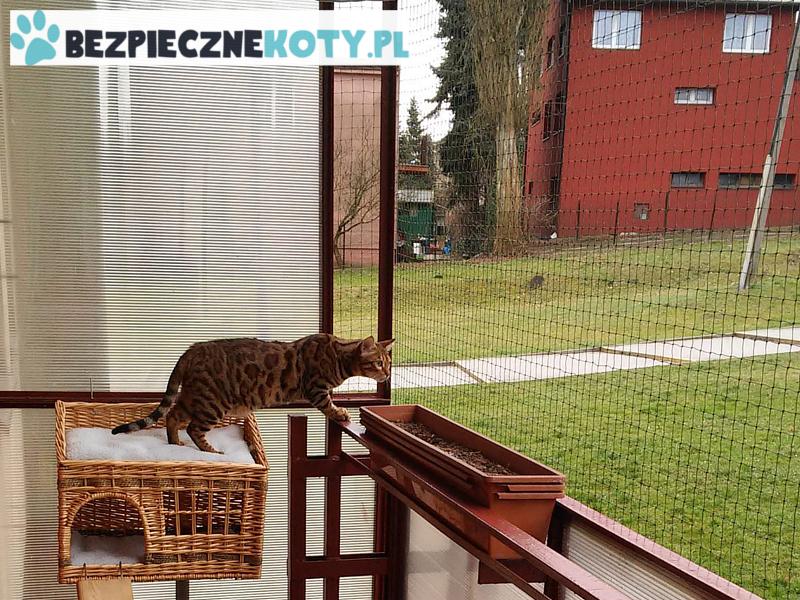 siatka zabezpieczająca dla kota przeciw wypadnięciu